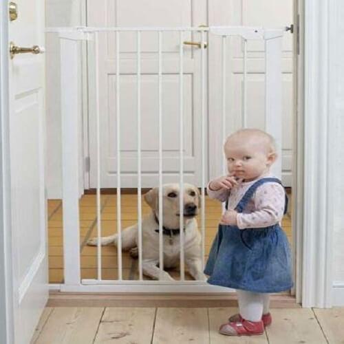 babydan zabrana